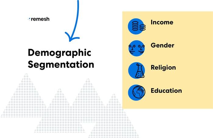 Demographic Segmentation Visual
