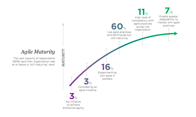 agile maturity by organization